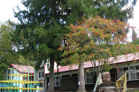 【鹿角の風景】中滝ふるさと学舎